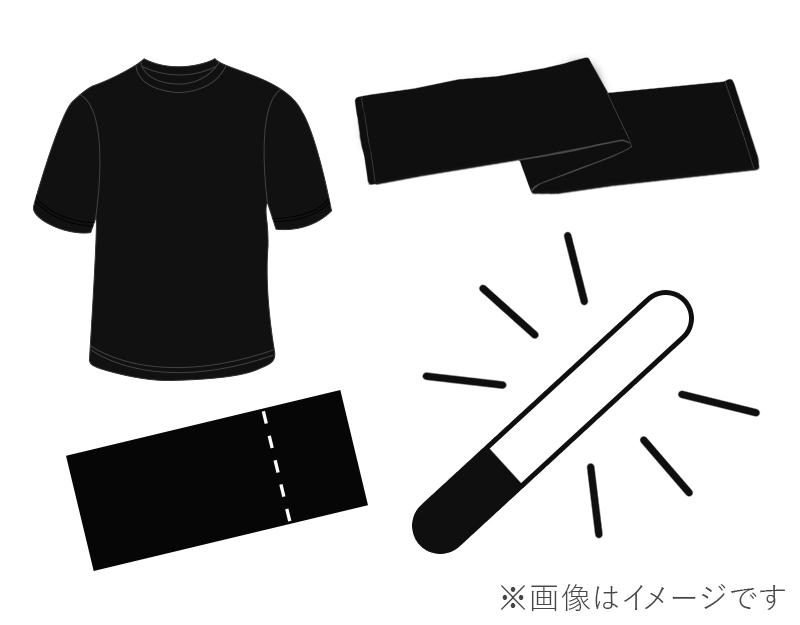【2/12 大阪・夜の部】チケット+サイリウム+タオル+Tシャツの画像