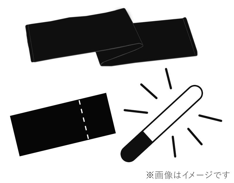 【2/3 東京・夜の部】チケット+サイリウム+タオルの画像
