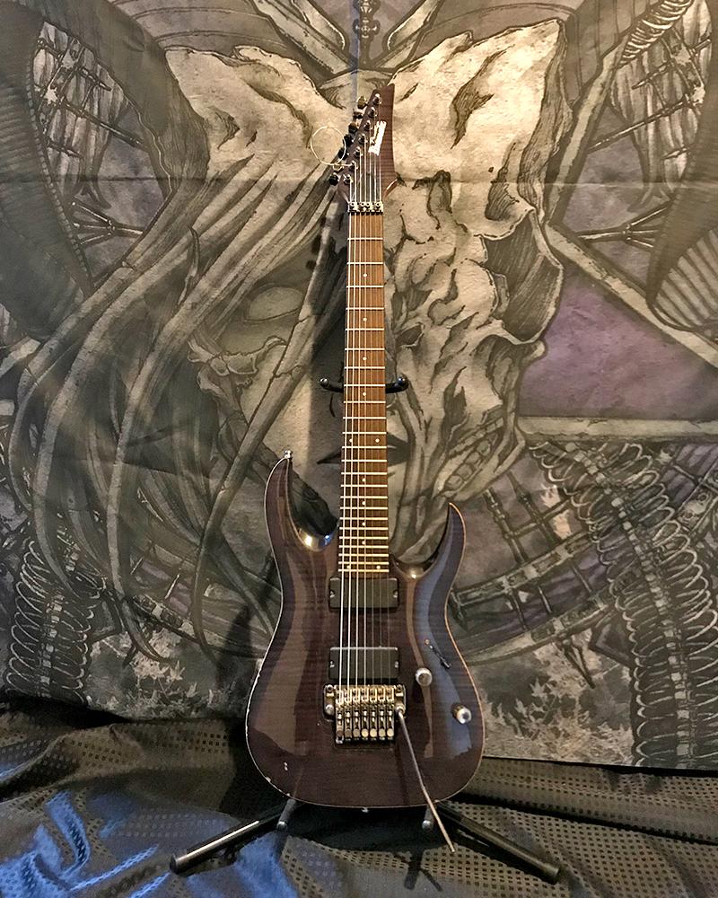 紫煉 使用ギター