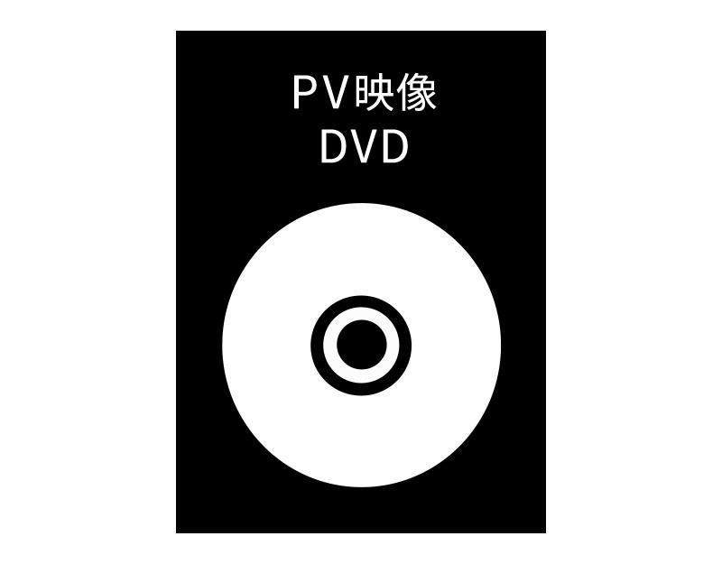 PV映像DVD