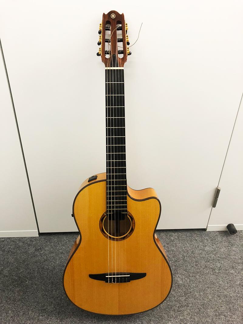 藤巻亮太サイン入りギター