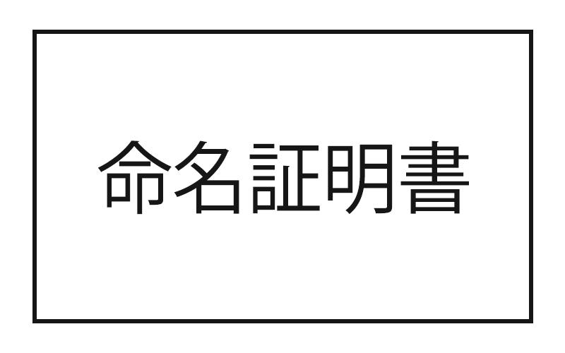 """佐藤""""コテイスイ""""康一[Dr/Per] コテイスイの名称変更いたします権"""