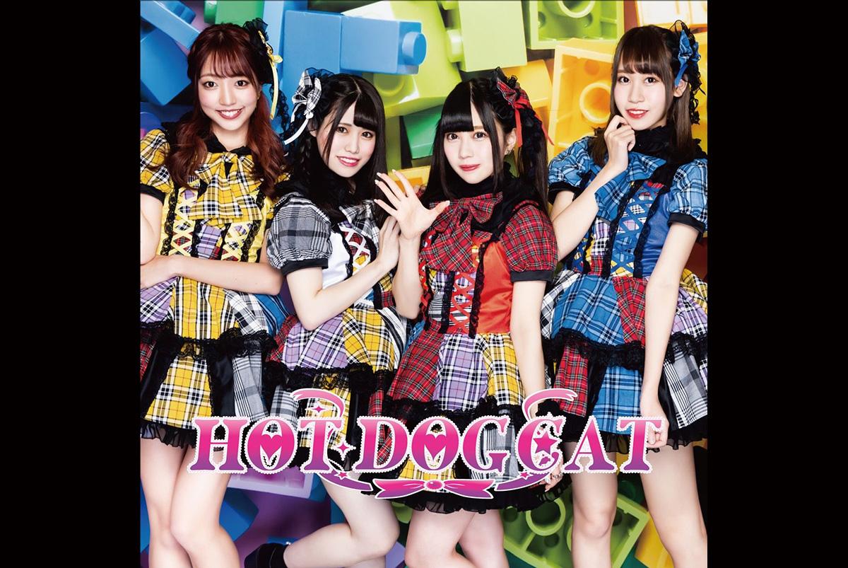 HOT DOG CAT 3rdワンマン開催&1stシングル発売記念プロジェクト!の画像