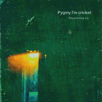 Pygmy I'm cricket