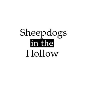 Sheepdogs in the Hollow
